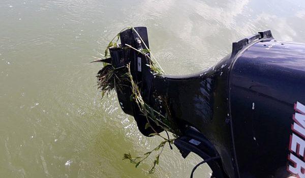 Hínár a hajócsavaron